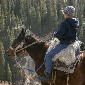 horse back riding travel