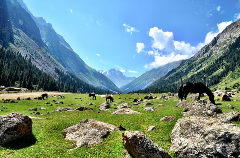 tours with horses in central asia