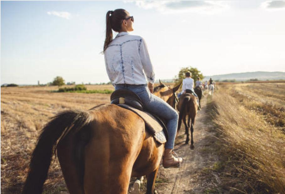 Horseback tours to gorge Shamshy